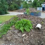 Garden, gardening group